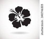 black hibiscus flower on white... | Shutterstock .eps vector #340746305