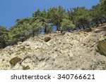 the mountains. forest   Shutterstock . vector #340766621
