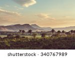 tropical jungle in mexico | Shutterstock . vector #340767989