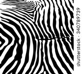zebra skin vector background | Shutterstock .eps vector #340789739
