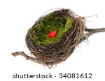 Natural nest with heart - stock photo
