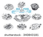 vector hand drawn illustration... | Shutterstock .eps vector #340843181