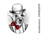 vector dog in a  hat and red... | Shutterstock .eps vector #340982099