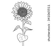 Doodle Sunflower Contour...
