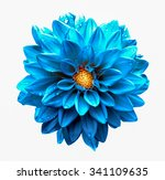 surreal dark chrome clear blue... | Shutterstock . vector #341109635