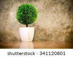artificial small tree in a...   Shutterstock . vector #341120801