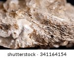 a rough unrefined gypsum sample ... | Shutterstock . vector #341164154