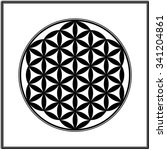 flower of life. vector element... | Shutterstock .eps vector #341204861
