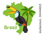 stylized map of brazil with... | Shutterstock .eps vector #341444015