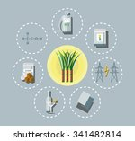 sugar cane application in... | Shutterstock .eps vector #341482814