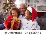 Grandfather With Grandchildren...