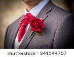groom | Shutterstock . vector #341544707