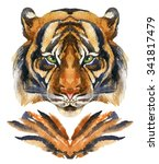 Tiger Head. Hand Painted...