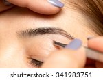grooming the eyebrows in a... | Shutterstock . vector #341983751