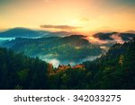 Misty Pine Forest. The Mountai...