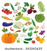 set of fresh vegetables | Shutterstock .eps vector #342042635