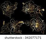 seamless fhibiscus flowers... | Shutterstock .eps vector #342077171