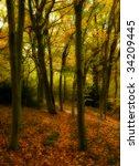 dreamy autumn wood | Shutterstock . vector #34209445