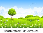 summer landscape with flowers... | Shutterstock .eps vector #342096821