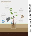 infographic of planting tree... | Shutterstock .eps vector #342103301