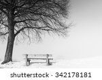 bench  110  on a foggy and... | Shutterstock . vector #342178181
