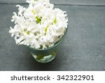 white hyacinth flowers on black ... | Shutterstock . vector #342322901