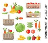 ingathering concept. vegetable... | Shutterstock .eps vector #342361289