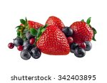 berry fruit. | Shutterstock . vector #342403895