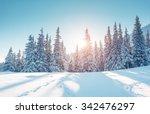 majestic winter landscape... | Shutterstock . vector #342476297