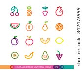 fruit and berries bright... | Shutterstock .eps vector #342476999