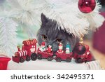 beautiful cat with christmas... | Shutterstock . vector #342495371