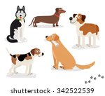 Happy Dog Vector Characters On...