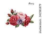 bouquet of roses  watercolor ...   Shutterstock . vector #342581879