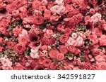 Stock photo abstract background of flowers close up 342591827