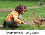 Little girl feeding the ducks in the park
