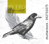 Vector Vintage Raven. Hand...