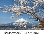 mountain fuji and cherry... | Shutterstock . vector #342748061