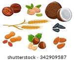 tasty walnuts  peanuts  almonds ... | Shutterstock .eps vector #342909587