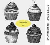 cupcakes set. lemon cupcake ... | Shutterstock .eps vector #343113179