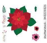 christmas decoration poinsettia ... | Shutterstock .eps vector #343223321