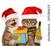 funny cats with christmas hat.  | Shutterstock . vector #343384619