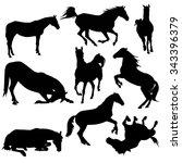 Horse Silhouette. Equestrian...