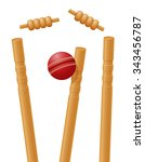 cricket ball caught in the... | Shutterstock .eps vector #343456787