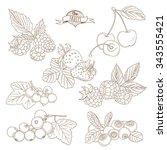 illustration set of outline... | Shutterstock . vector #343555421