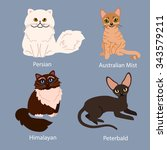 set of cartoon cats with... | Shutterstock .eps vector #343579211