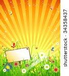 summer meadow beautiful | Shutterstock .eps vector #34358437