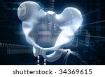 digital illustration  of pelvic ... | Shutterstock . vector #34369615