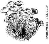mushrooms black and white | Shutterstock .eps vector #34377619