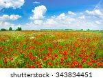 beautiful poppy field | Shutterstock . vector #343834451