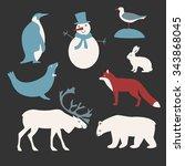 vector set of arctic and... | Shutterstock .eps vector #343868045